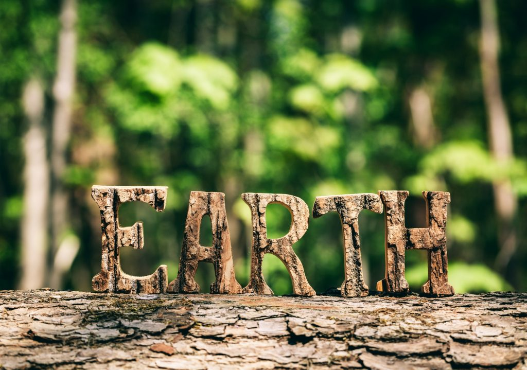 EARTH writing made from wooden letters in the forest